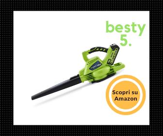 Greenworks, migliore aspirafoglie a batterie - La nostra scelta - Besty5