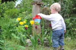 Il miglior kit per irrigazione a goccia: tieni il tuo giardino sempre verde! - Immagine in evidenza - Besty5