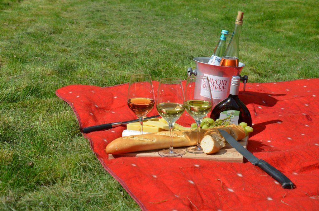 Come organizzare un picnic perfetto? Ecco i piatti ideali! - Immagine in evidenza